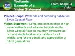 wetlands example of a vision statement