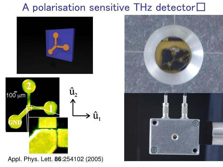 A polarisation sensitive THz detector