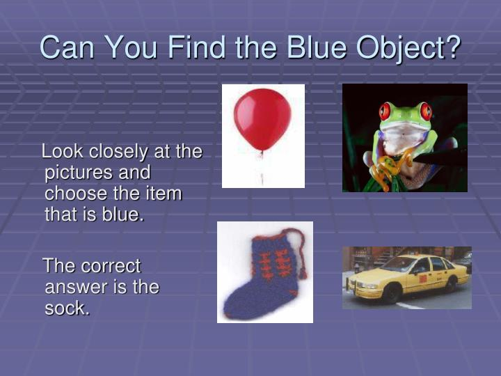 Can You Find the Blue Object?
