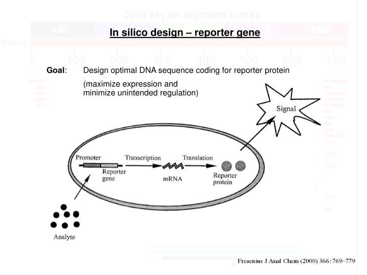 In silico design – reporter gene