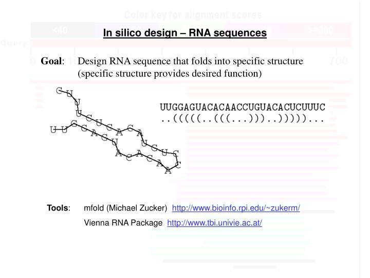 In silico design – RNA sequences