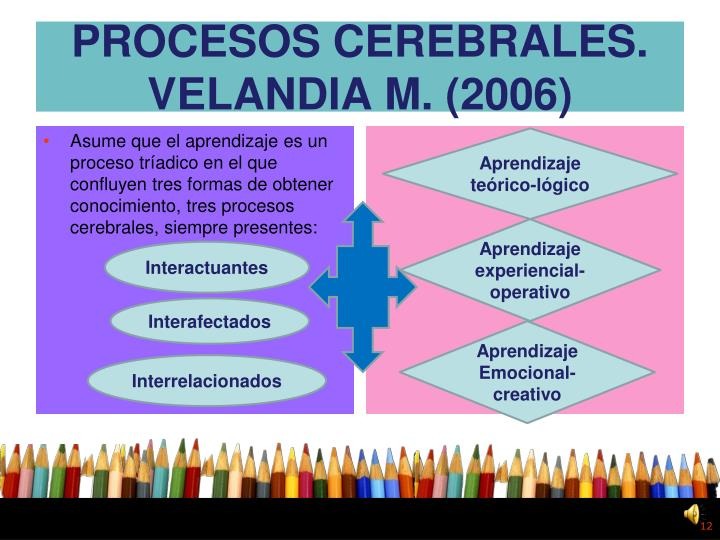 PROCESOS CEREBRALES. VELANDIA M. (2006)