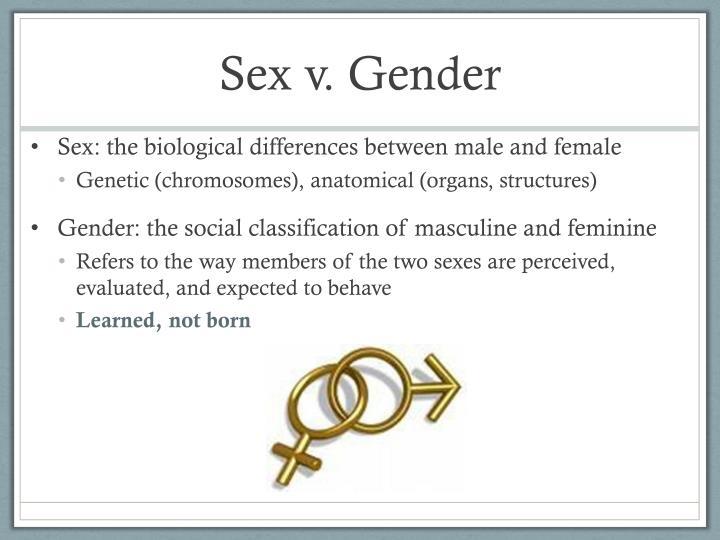Sex v gender
