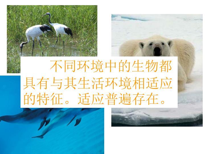 不同环境中的生物都具有与其生活环境相适应的特征。适应普遍存在。