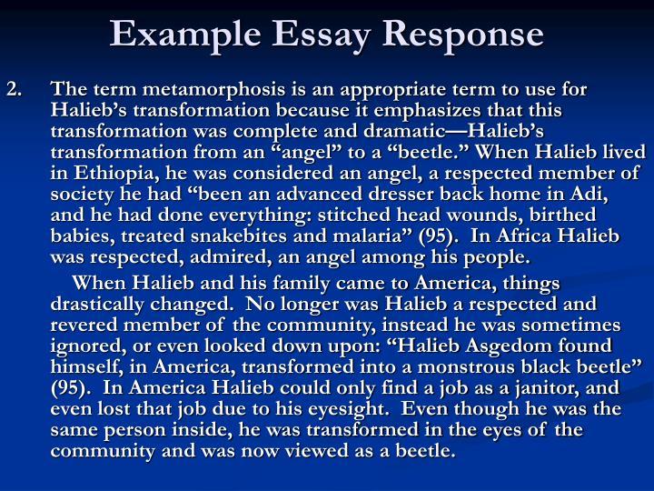 Example Essay Response