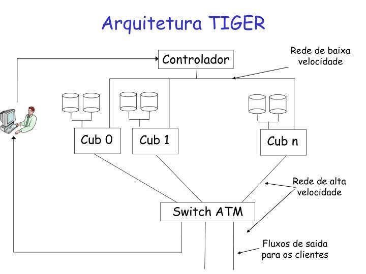 Arquitetura TIGER