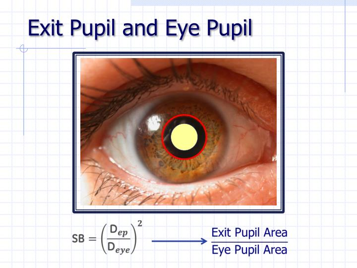 Exit Pupil and Eye Pupil