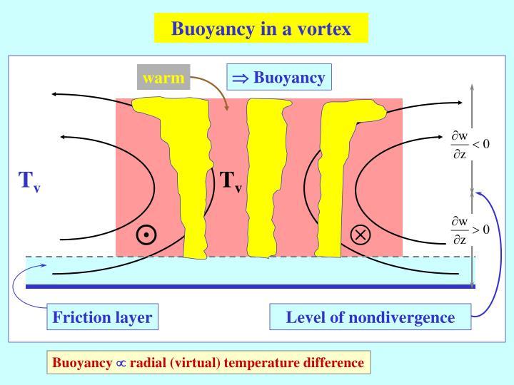 Buoyancy in a vortex