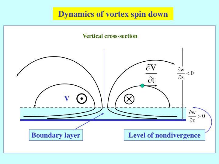 Dynamics of vortex spin down