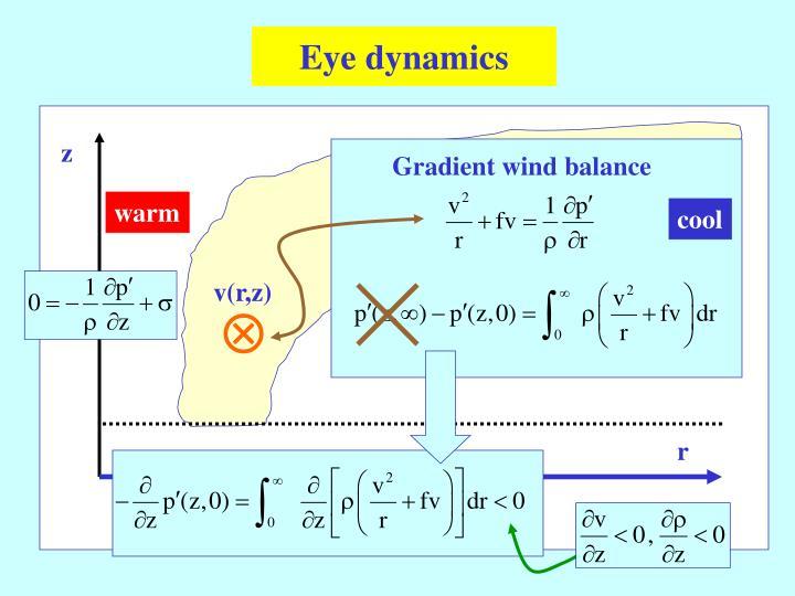 Eye dynamics