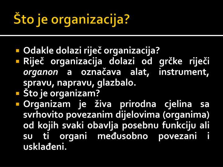 Što je organizacija?