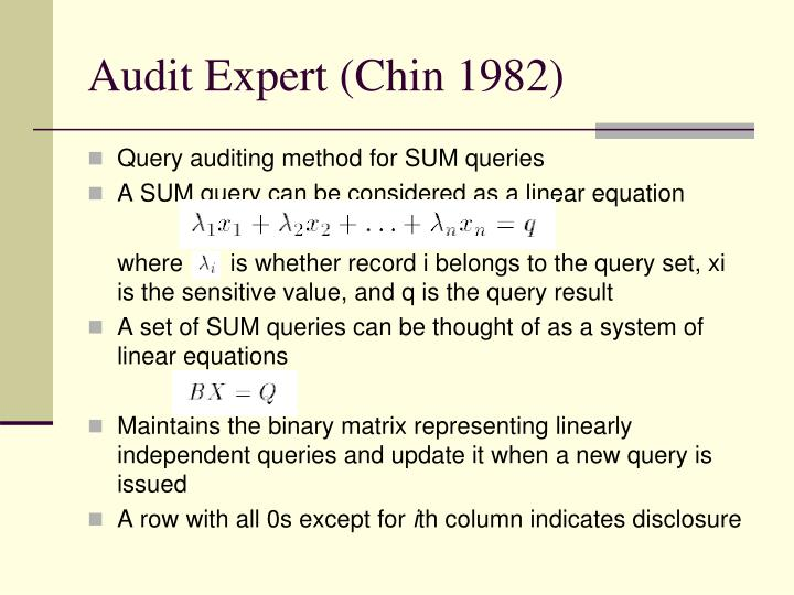 Audit Expert (Chin 1982)
