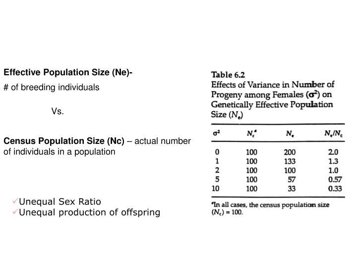 Effective Population Size (Ne)-