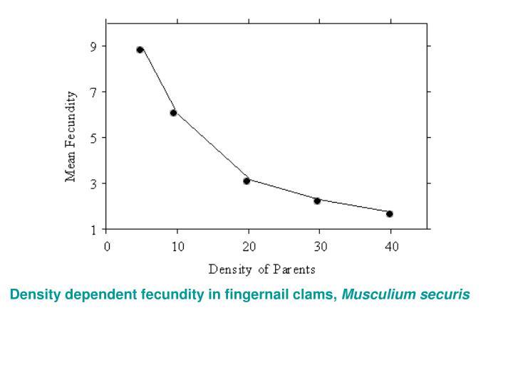 Density dependent fecundity in fingernail clams,