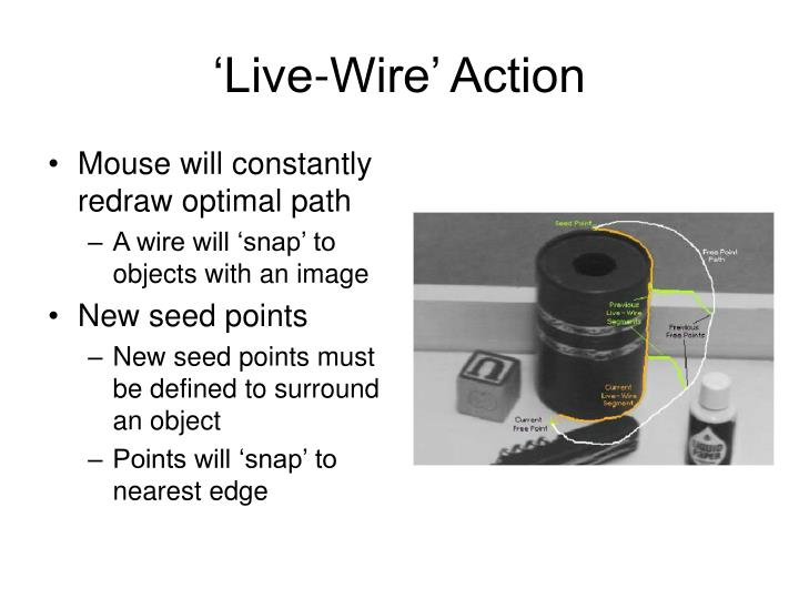 'Live-Wire' Action