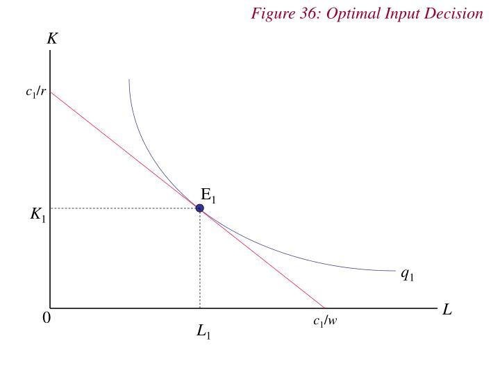 Figure 36: Optimal Input Decision