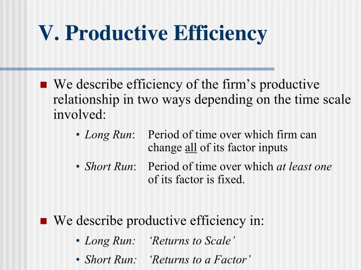 V. Productive Efficiency