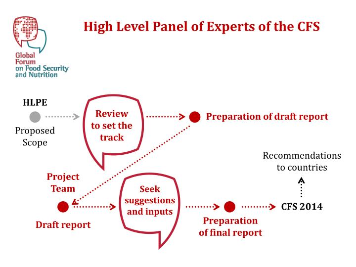 High Level Panel of Experts of the CFS