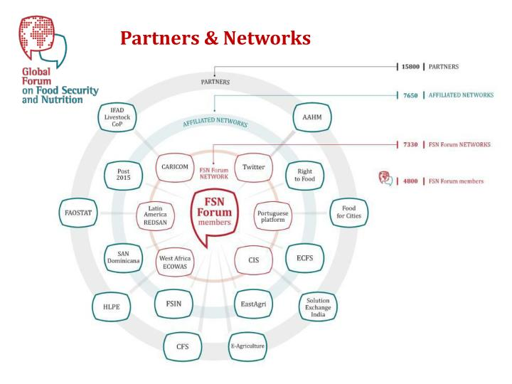 Partners & Networks