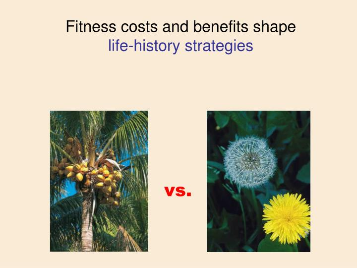 Fitness costs and benefits shape