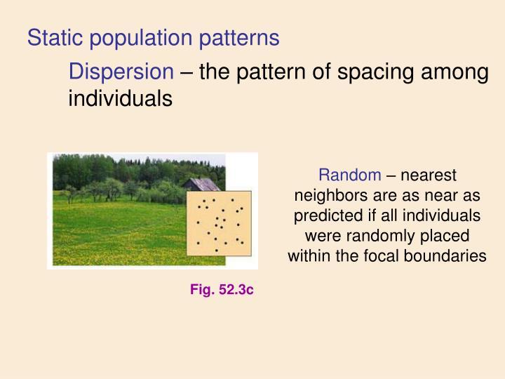 Static population patterns