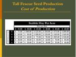 tall fescue seed production cost of production2