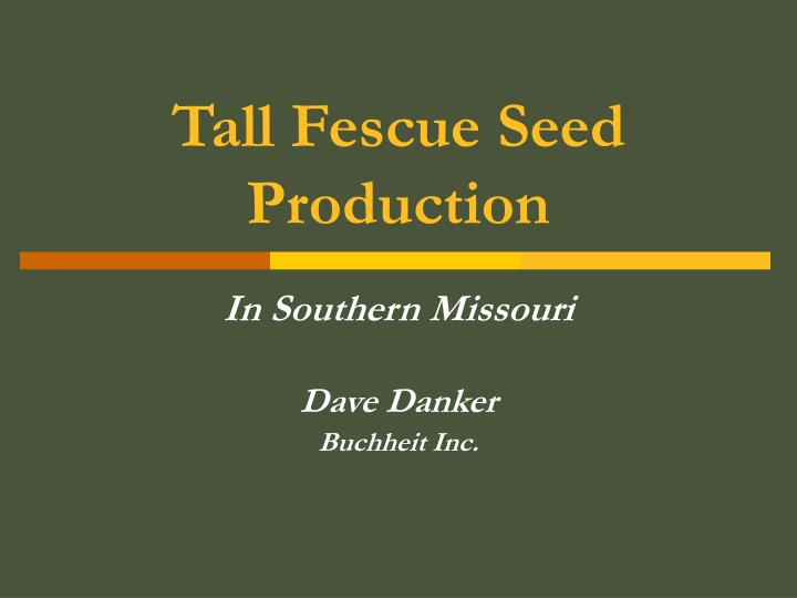 tall fescue seed production n.