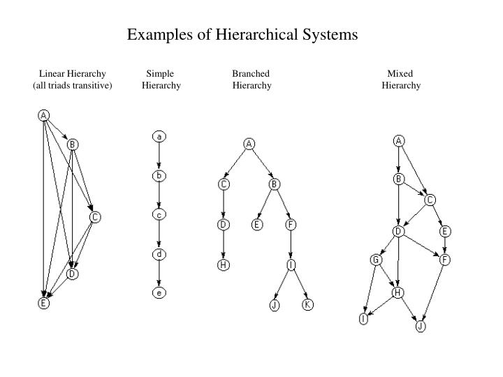 Examples of Hierarchical Systems