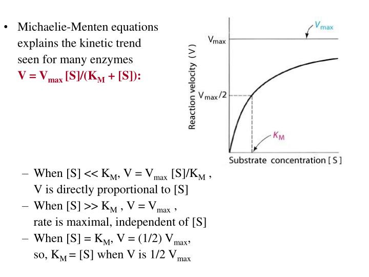 Michaelie-Menten equations