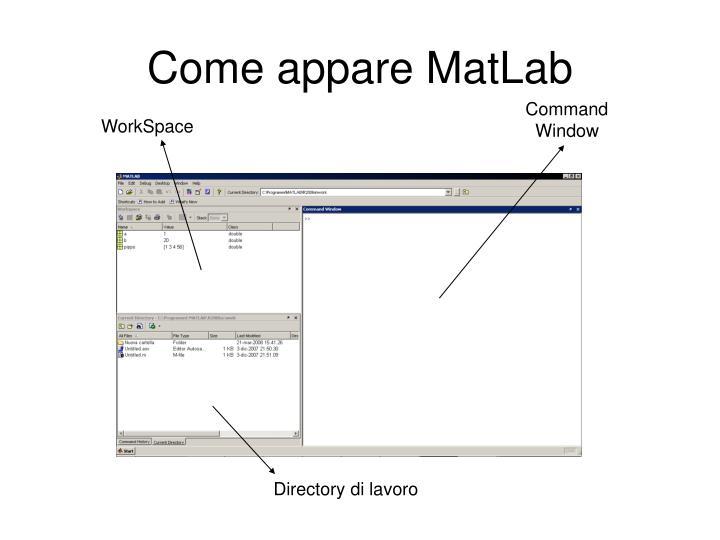 Come appare MatLab