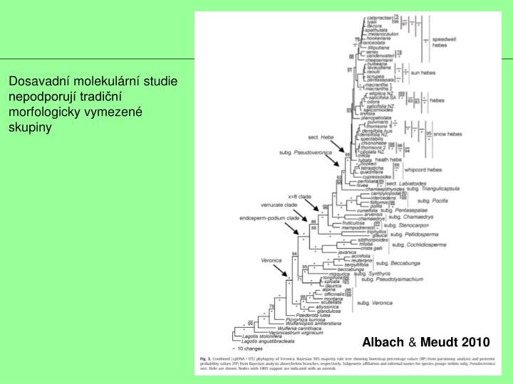 Dosavadní molekulární studie