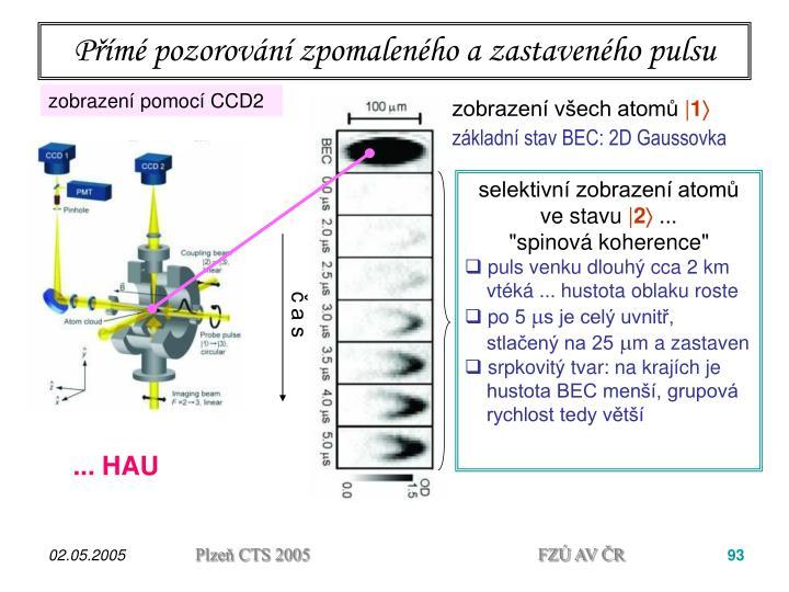 Přímé pozorování zpomaleného a zastaveného pulsu
