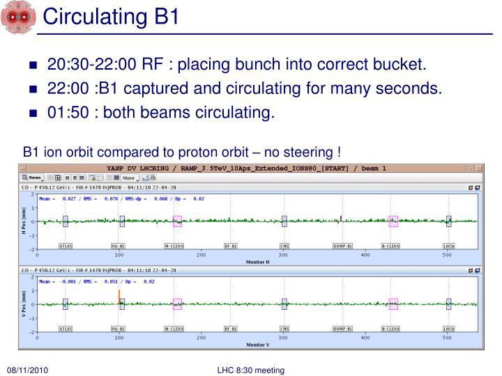 Circulating B1