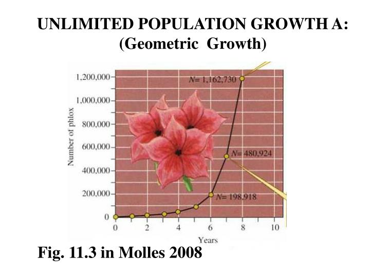 UNLIMITED POPULATION GROWTH A: