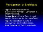 management of endoleaks