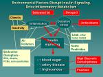 environmental factors disrupt insulin signaling drive inflammatory metabolism1