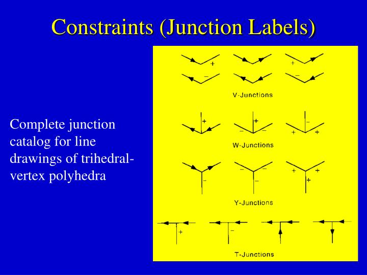 Constraints (Junction Labels)