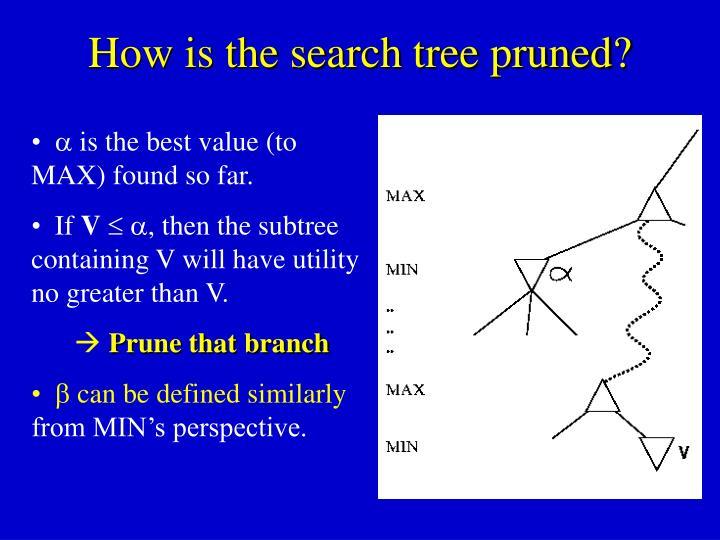 How is the search tree pruned?