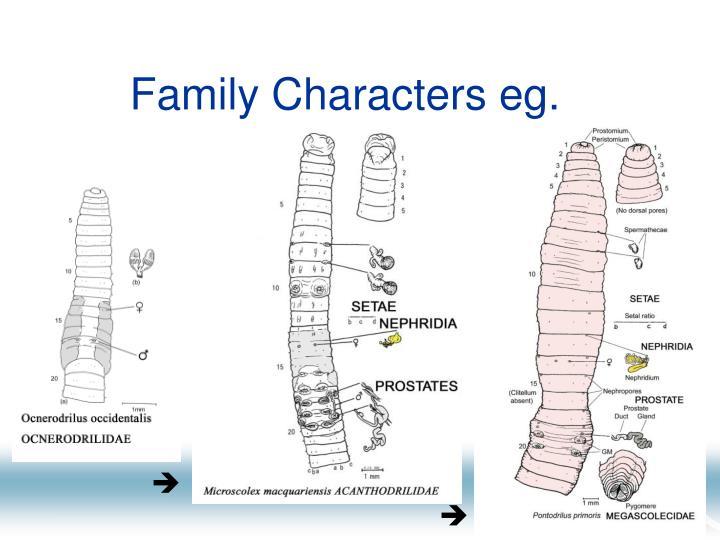 Family characters eg