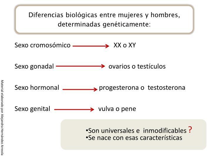 Diferencias biológicas entre mujeres y hombres,
