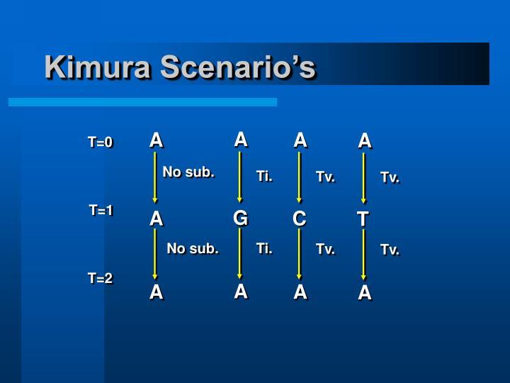 Kimura Scenario's