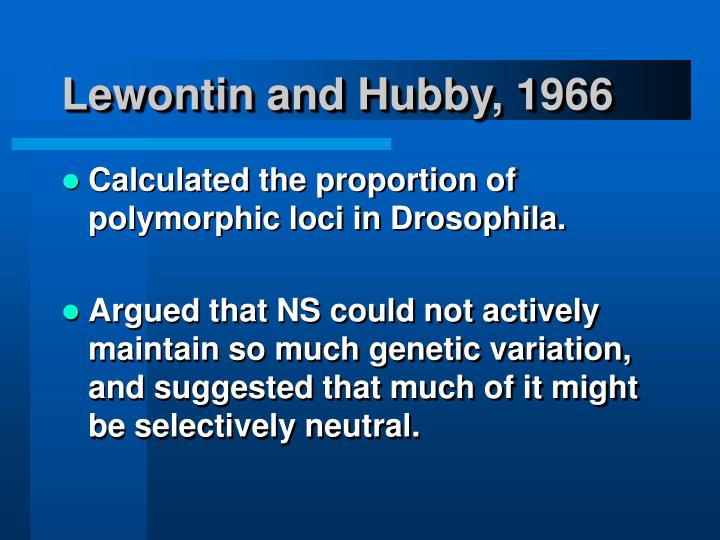 Lewontin and hubby 1966