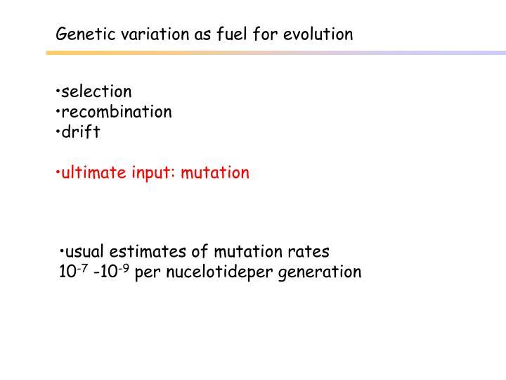 Genetic variation as fuel for evolution