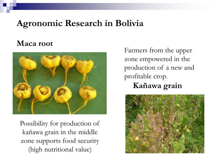 Agronomic Research in Bolivia