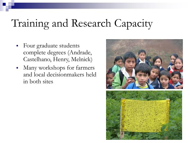 Training and Research Capacity