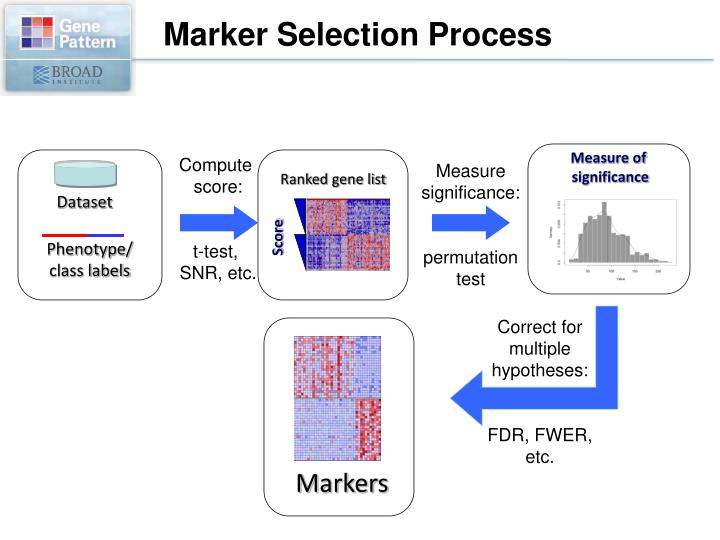 Marker Selection Process