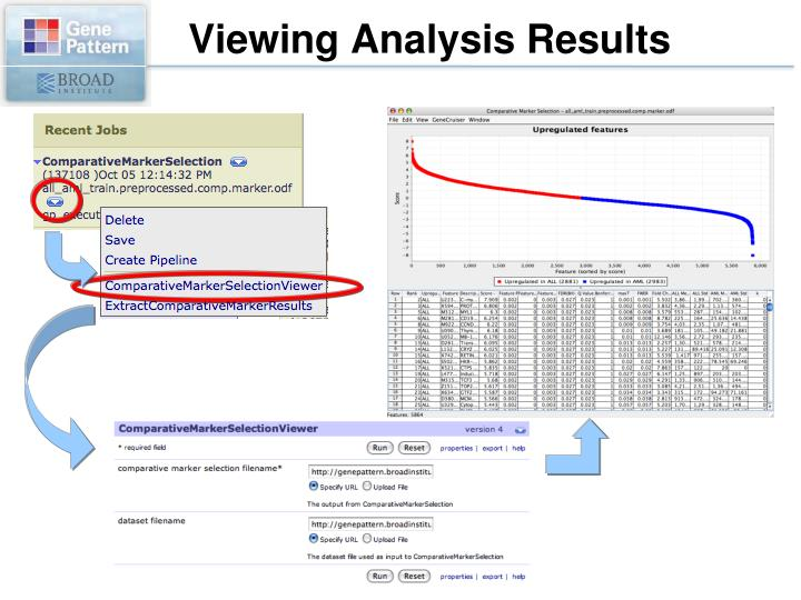 Viewing Analysis Results