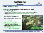 tama300 1 overview