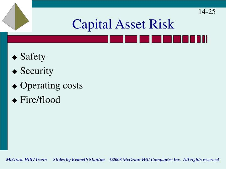 Capital Asset Risk