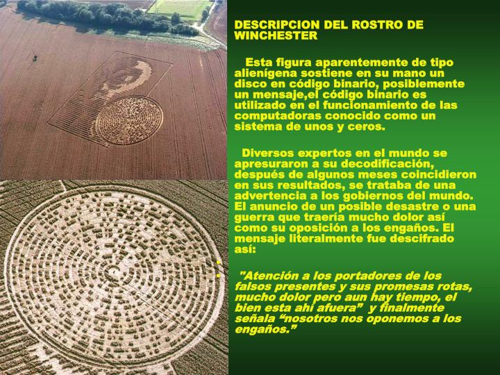 DESCRIPCION DEL ROSTRO DE WINCHESTER